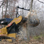 land clearing 1