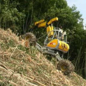 land clearing 2
