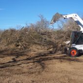 landclearing 5